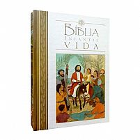 BIBLIA INFANTIL VIDA 9788538303183