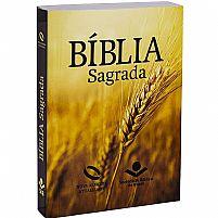 Bíblia Sagrada Nova Almeida Atualizada