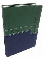 BIBLIA BILINGUE NVI PORTUGUES INGLES VERDE E AZUL   BIBLIA BILINGUE