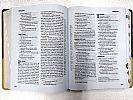 BIBLIA DE ESTUDO MINISTERIAL NVI LUXO AZUL E BEGE SEM INDICE   BIBLIA DE ESTUDO